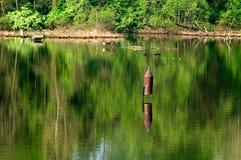 Birdhouse en el lago imagenes de archivo