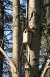 Birdhouse en el resorte Foto de archivo