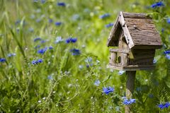 Birdhouse entre las flores Fotografía de archivo