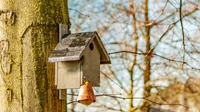 Birdhouse with a fat ball hanging on a trunk of a tree with a blurred background stock photos