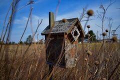 Birdhouse in field Royalty Free Stock Image