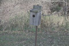 Birdhouse in a field stock photos