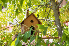 Birdhouse Among the Flowers Stock Image
