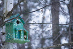 Birdhouse in the forest Royalty Free Stock Photography