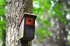 Birdhouse in the forest Royalty Free Stock Images