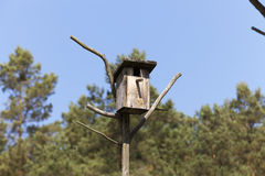 Free Birdhouse From A Tree Stock Image - 70582551