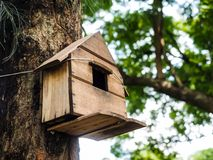 A birdhouse. Hanging a brown birdhouse on a tree Royalty Free Stock Photo