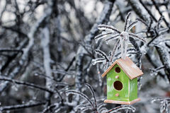 Birdhouse hanging on ice covered tree branches royalty free stock photos