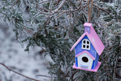 Birdhouse hanging on ice covered tree branches royalty free stock images