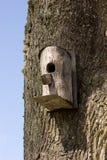 Birdhouse hanging on tree Royalty Free Stock Photography