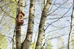 Birdhouse hangs on a birch tree. Red birdhouse hangs on a birch tree Royalty Free Stock Photos