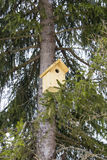 A birdhouse Royalty Free Stock Images