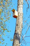 A birdhouse. a house for birds, on a tree. Autumn stock images