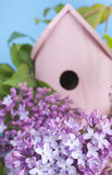 Birdhouse, lilac, spring, new home. Pink birdhouse on a lilac bush. Blue sky. Shallow depth of field. Spring, new house or bird friendly gardening concept royalty free stock photos