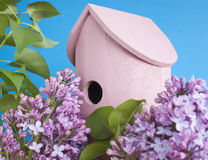 Birdhouse, lilac, spring, new home. Pink birdhouse on a lilac bush. Blue sky. Shallow depth of field. Spring, new house or bird friendly gardening concept stock photos