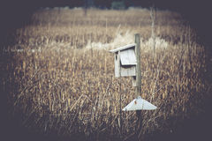 Birdhouse in Marsh. A wooden birdhouse in a marsh setting Royalty Free Stock Images