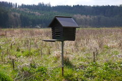 Birdhouse in meadow in black forest Royalty Free Stock Image