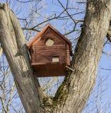 Birdhouse między gałąź Zdjęcia Stock