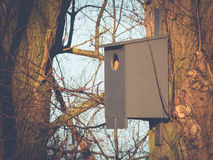 Birdhouse in the Morning Sun Royalty Free Stock Photography