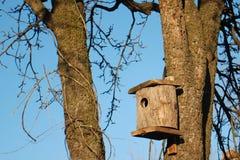 Birdhouse na bonkrety drzewie Obraz Royalty Free