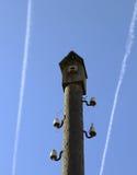 Birdhouse na słupie Zdjęcie Royalty Free
