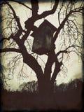 Birdhouse nell'albero Immagini Stock Libere da Diritti