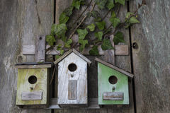 Birdhouse on old wooden fence Stock Images