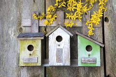 Birdhouse on old wooden fence Stock Photography