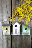 Birdhouse on old wooden fence Stock Photo