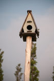Birdhouse. The simple wooden  birdhouse  with the circular  hole Royalty Free Stock Image