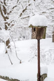 Birdhouse sitting on top of a pole and covered with snow royalty free stock images