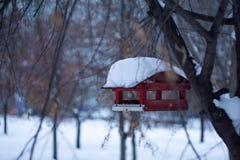 Birdhouse in the snowy city stock photo