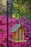 Birdhouse in Springtime. Hanging wooden birdhouse with azalea in bloom Stock Photography
