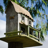 Birdhouse in a spruce tree. Close up of a quaint birdhouse in a spruce tree against a blue sky Stock Image