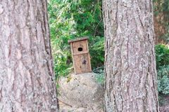 Birdhouse stands on a stone royalty free stock image