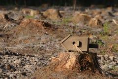 Birdhouse on the stump Stock Image