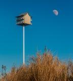 Birdhouse su una duna di sabbia Fotografia Stock Libera da Diritti