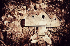 Birdhouse for Three Royalty Free Stock Photography
