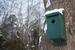 Birdhouse on tree Stock Photography