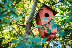 Birdhouse in the tree royalty free stock photography