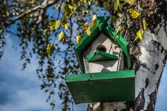 Birdhouse on a tree in the autumn forest. Bird nesting box on tree stock photos
