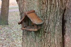 Birdhouse on the tree. royalty free stock photos