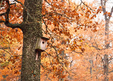Birdhouse Stock Photography