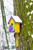 Birdhouse on a tree covered with moss in the forest in winter Stock Photos