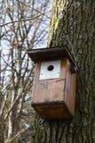 Birdhouse Royalty Free Stock Photo