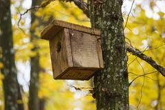 Birdhouse on a tree in forest Park , hand wood shelter for birds to spend the winter. Old wooden birdhouse on a tree in forest Park , hand wood shelter for birds Royalty Free Stock Image
