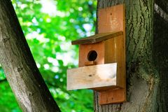 Birdhouse on a tree in forest park on spring day, hand wood shelter for birds royalty free stock photos
