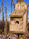 Birdhouse on a tree in the middle of a bush Stock Images