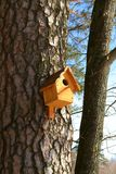 Birdhouse. On a tree natur bird branch Royalty Free Stock Image