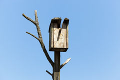 Birdhouse from a tree Royalty Free Stock Image